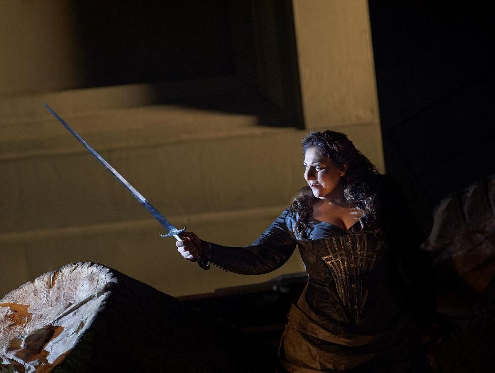 Christine Goerke (Brünnhilde) in the Canadian Opera Company's 2015 production of Die Walküre. Photo: Michael Cooper